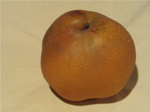 An Asian Pear