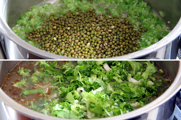 Mung Beans and Endive